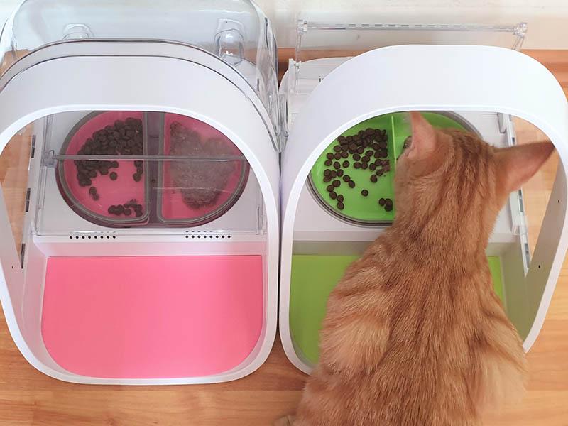 Sure Petcare Futterautomat